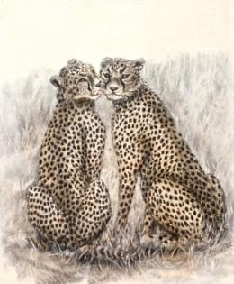 'Cheek to Cheetah'
