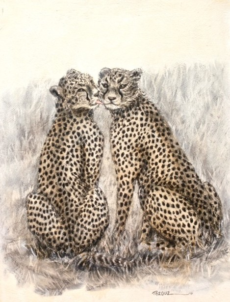 'Cheek to Cheetah'
