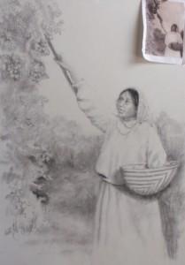 'The Harvest'
